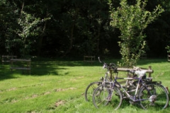 Bikes-in-Orchard